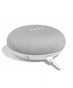 loa-loa-google-home-mini